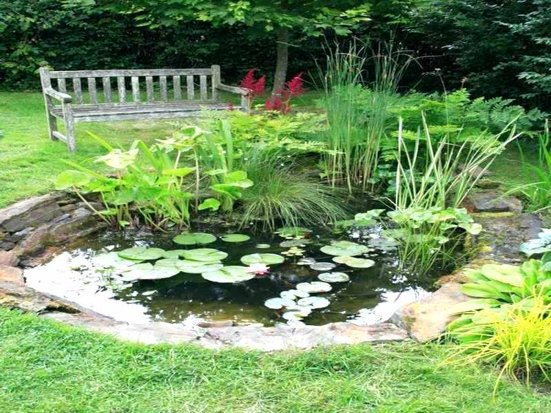 The Basic Principles Of Landscape Design Landscape Ideas The